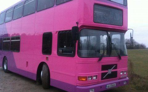 pink2-b39bdf19832c779ccd6932413817fb1a